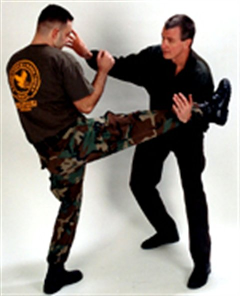 Hock's Crash Course in Unarmed Combatives - 6 hours only $49.99
